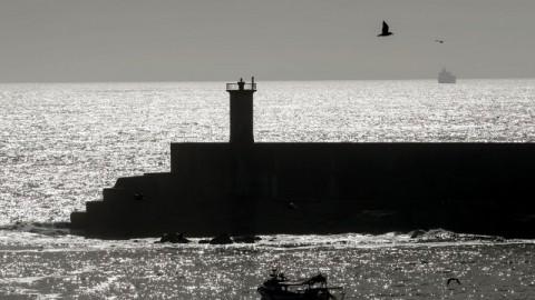 DN – PSD/Matosinhos exige estudo ambiental aprofundado antes de prolongar quebra-mar