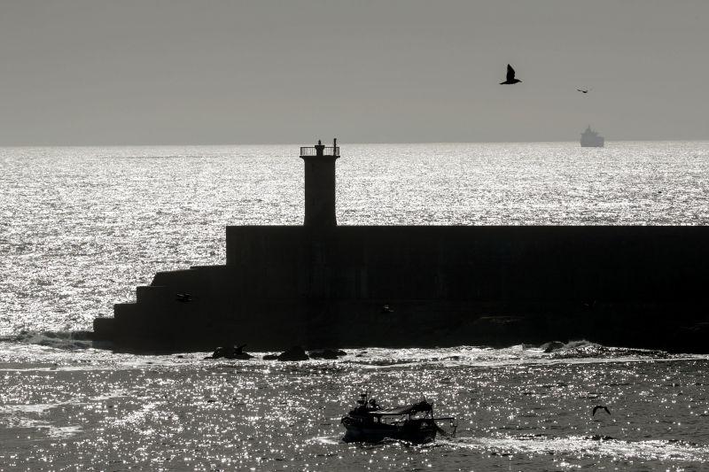 DN - PSD/Matosinhos fala em impactos gravíssimos no prolongamento do quebra-mar de Leixões