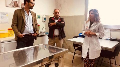 PSD de Matosinhos visita Centro Local de Recolha de Animais